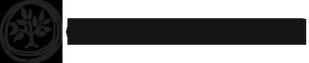 CAUSETEAM Logo